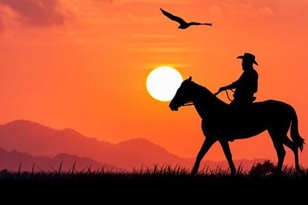 man on horse with orange sky
